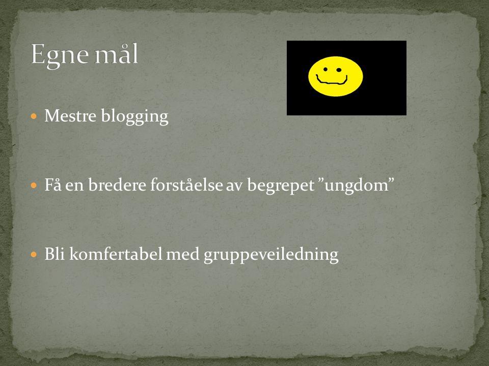 Egne mål Mestre blogging Få en bredere forståelse av begrepet ungdom
