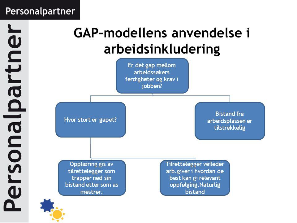 GAP-modellens anvendelse i arbeidsinkludering