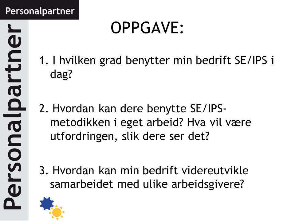 OPPGAVE: 1. I hvilken grad benytter min bedrift SE/IPS i dag