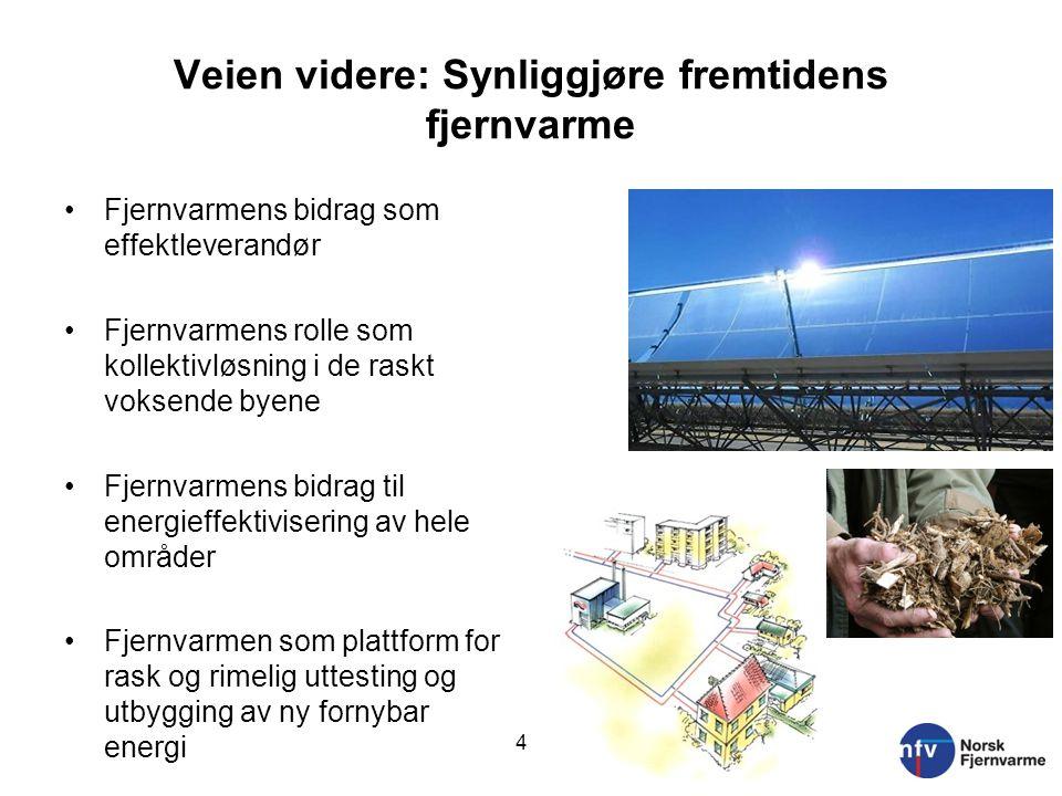Veien videre: Synliggjøre fremtidens fjernvarme