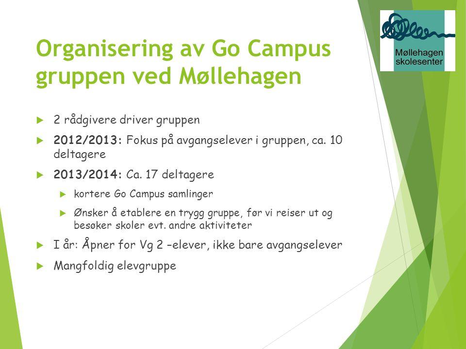 Organisering av Go Campus gruppen ved Møllehagen