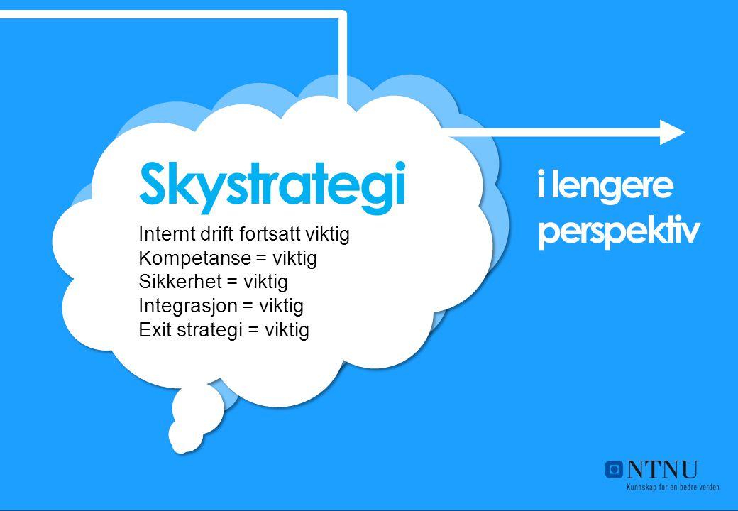 Skystrategi i lengere perspektiv Internt drift fortsatt viktig