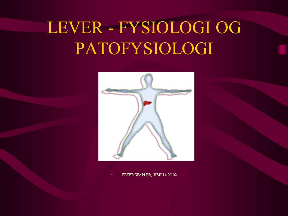 LEVER - FYSIOLOGI OG PATOFYSIOLOGI