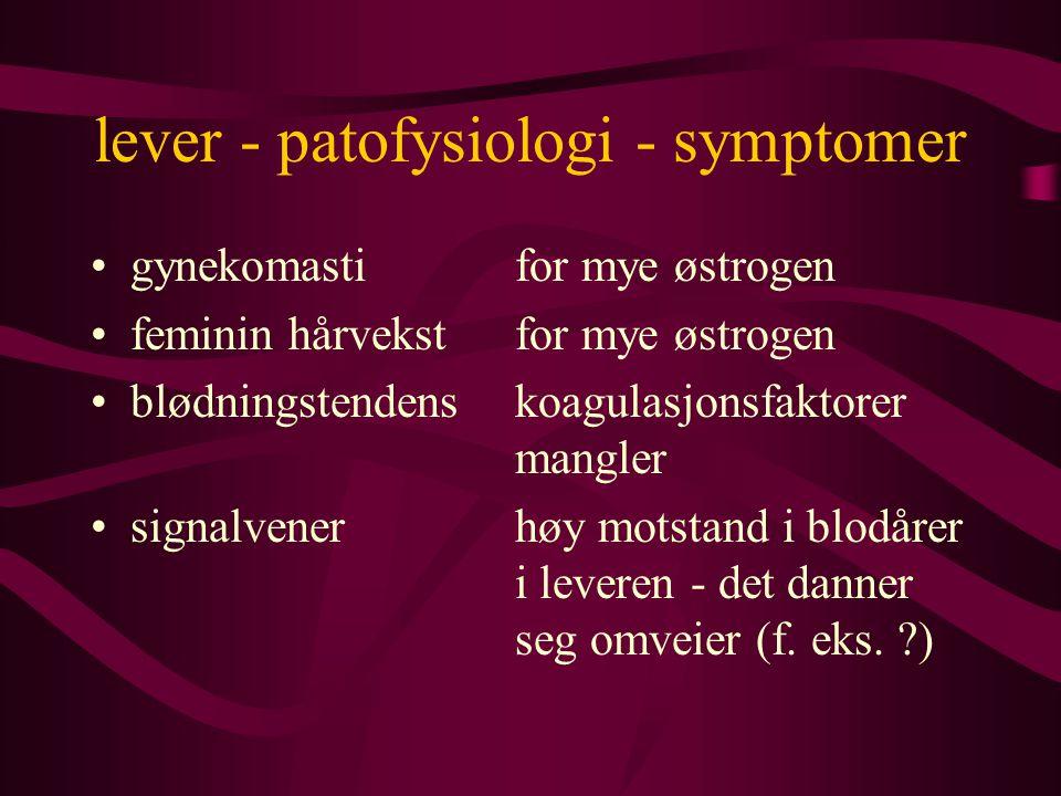 lever - patofysiologi - symptomer