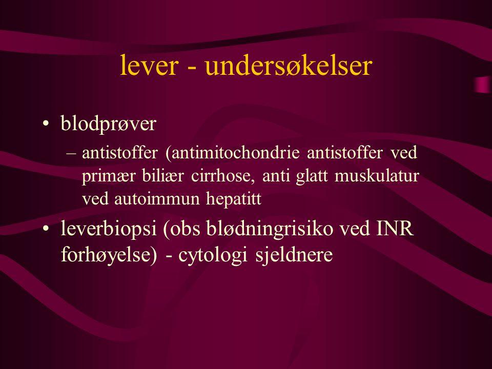 lever - undersøkelser blodprøver