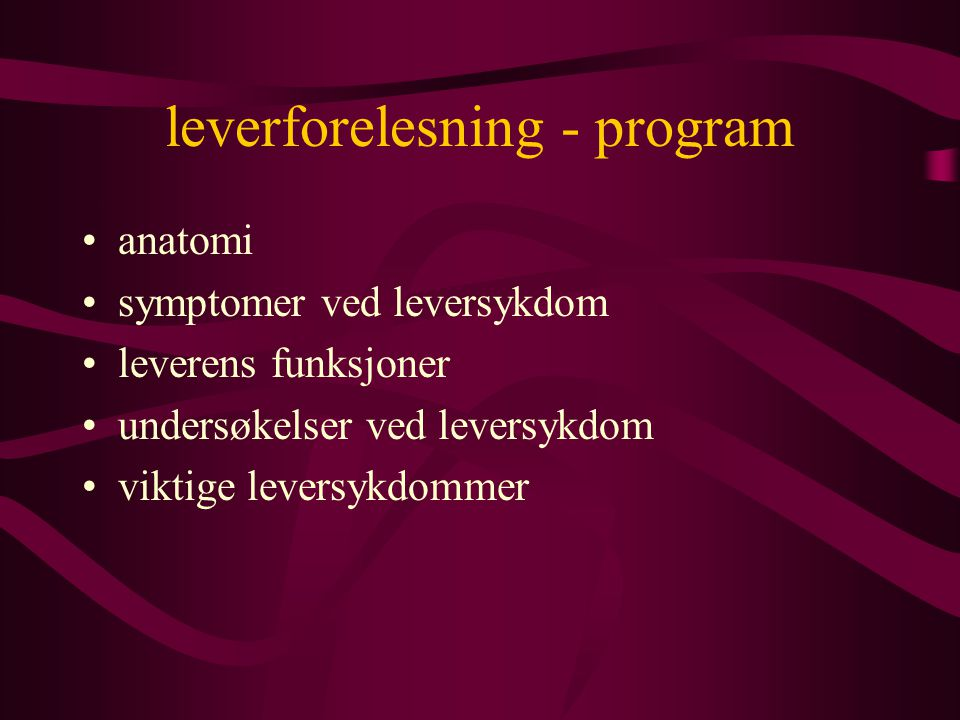 leverforelesning - program