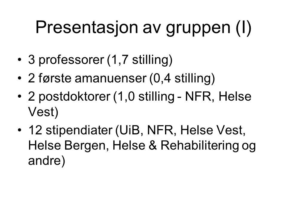 Presentasjon av gruppen (I)