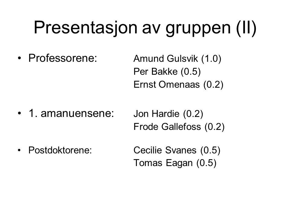 Presentasjon av gruppen (II)
