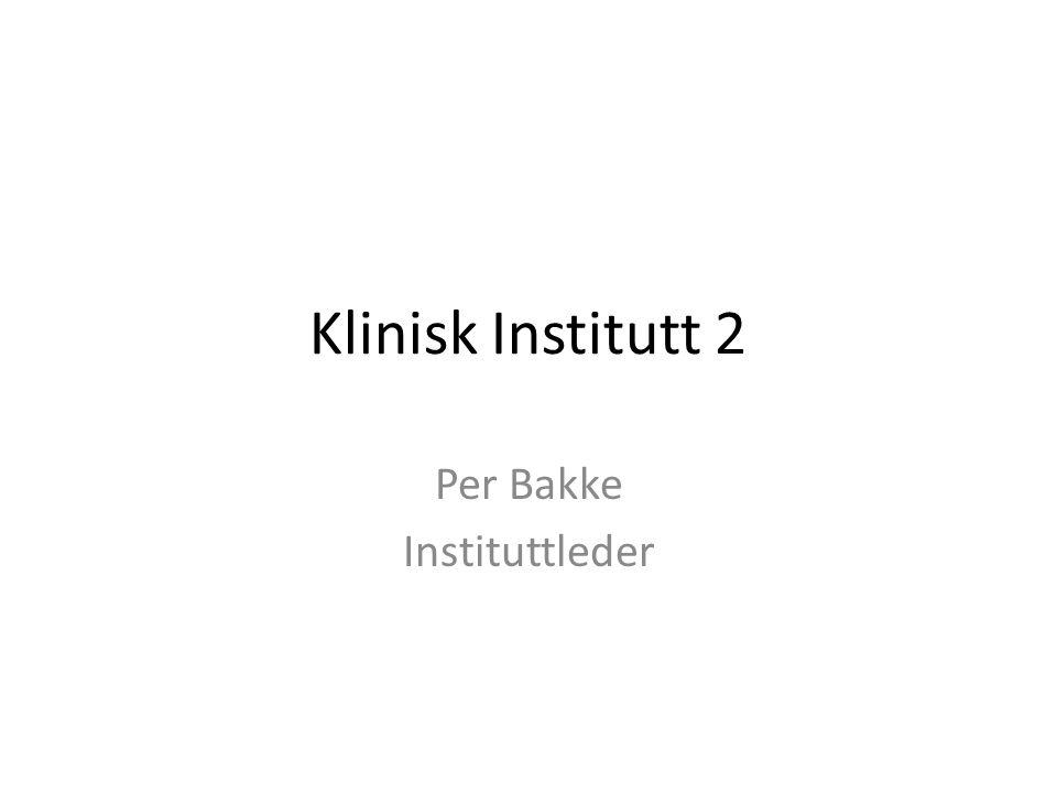 Per Bakke Instituttleder