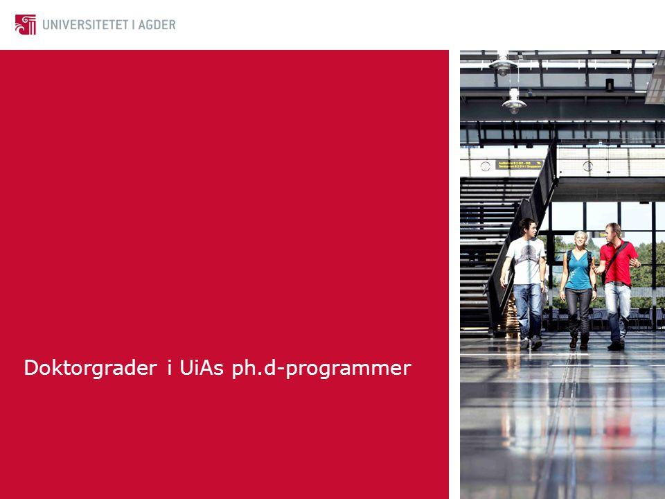 Doktorgrader i UiAs ph.d-programmer