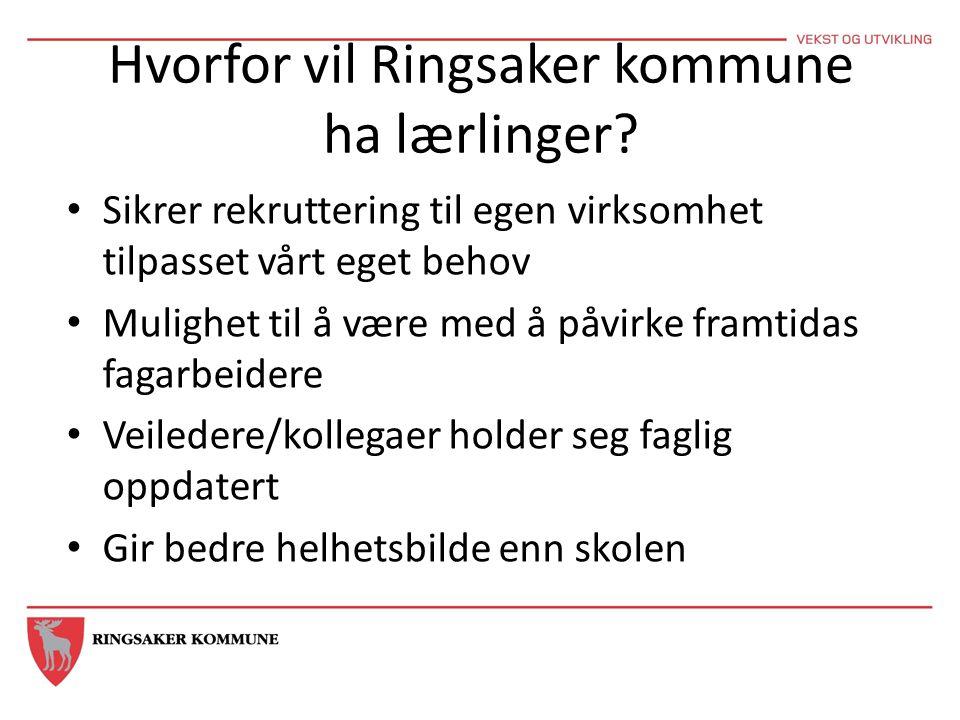 Hvorfor vil Ringsaker kommune ha lærlinger