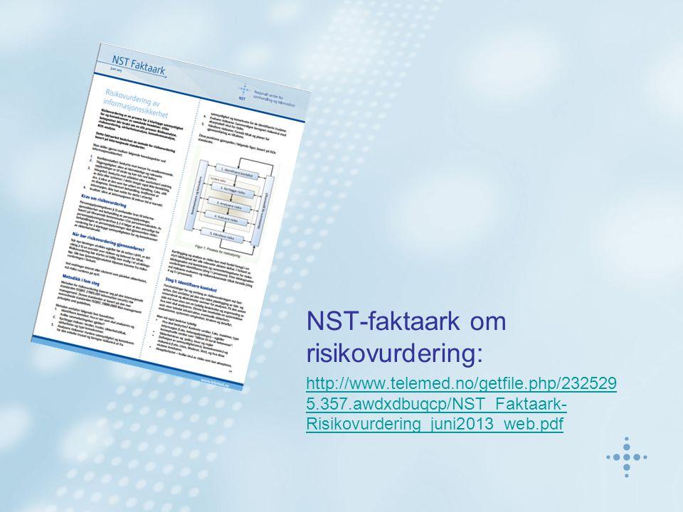 NST-faktaark om risikovurdering: