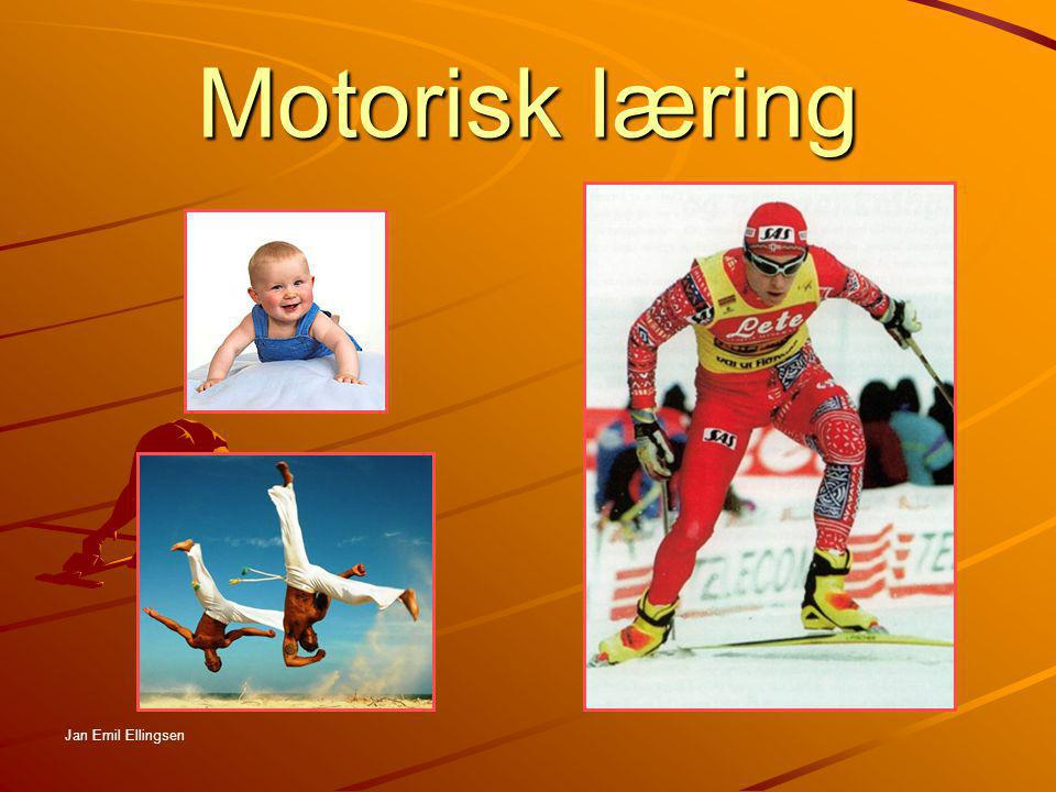 Motorisk læring