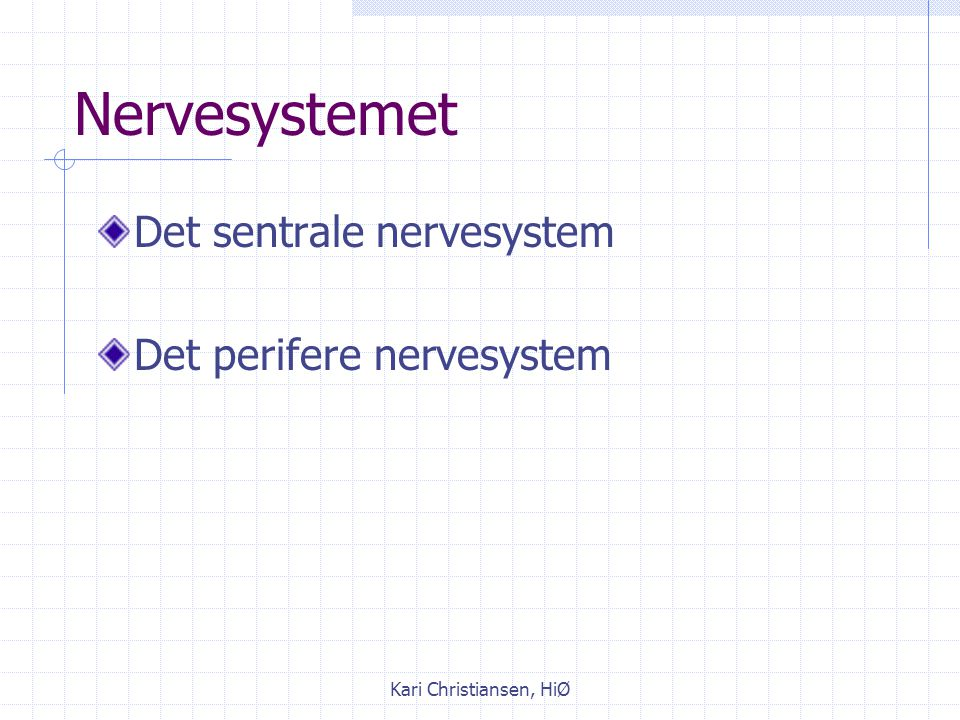 Nervesystemet Det sentrale nervesystem Det perifere nervesystem