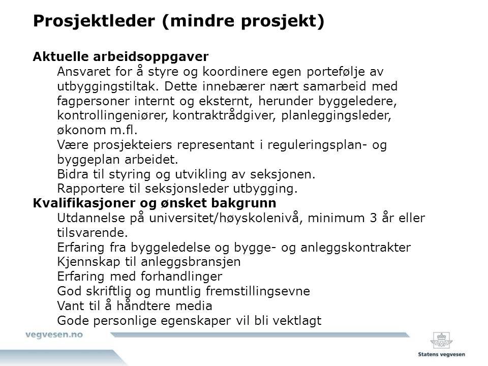 Prosjektleder (mindre prosjekt)