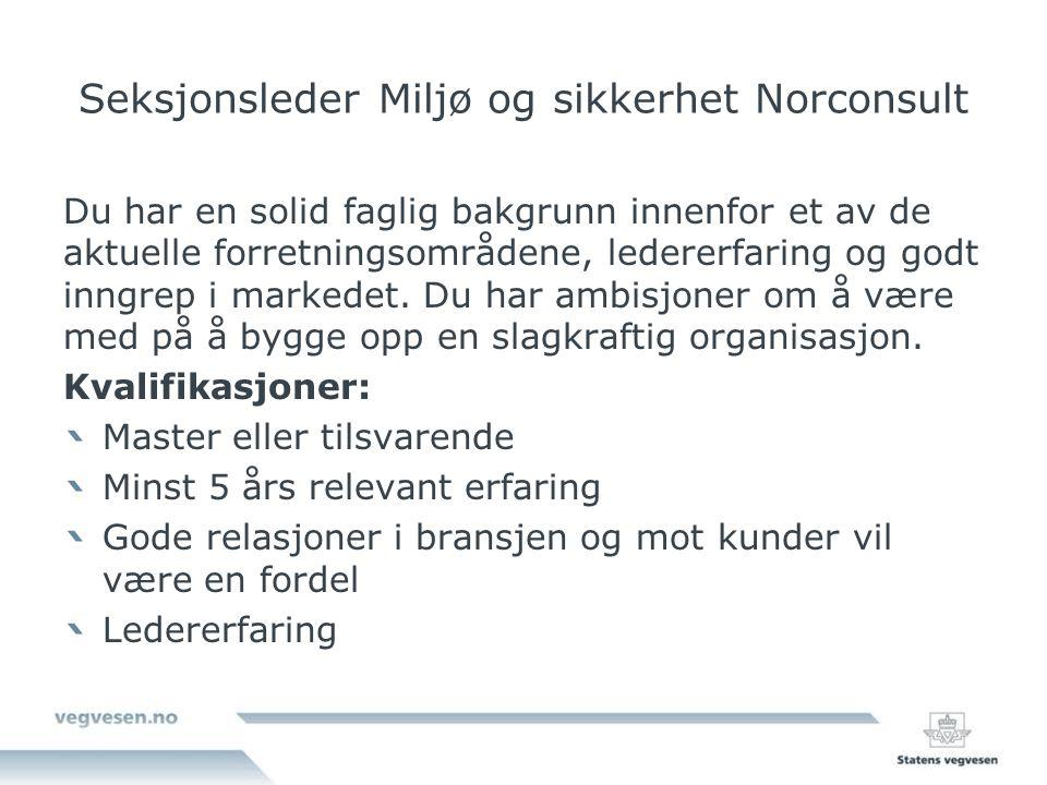 Seksjonsleder Miljø og sikkerhet Norconsult