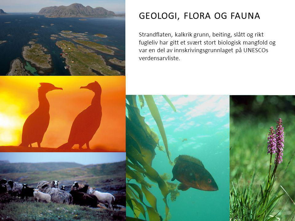 Geologi, flora og fauna
