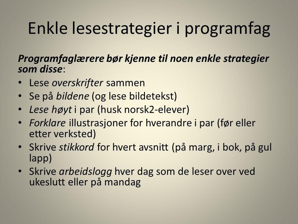 Enkle lesestrategier i programfag