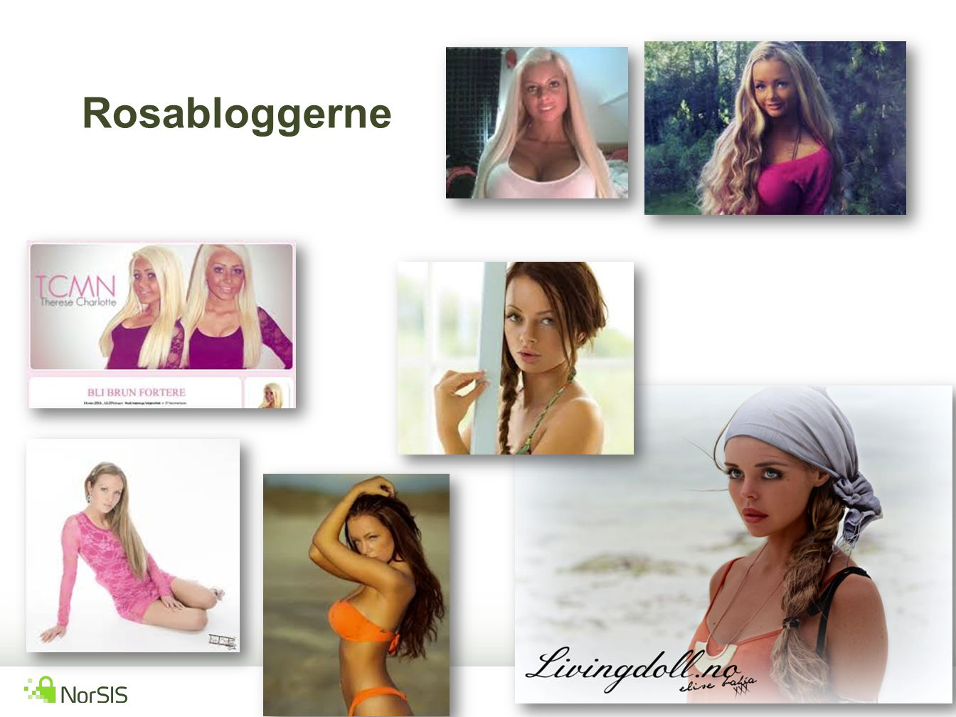 Rosabloggerne