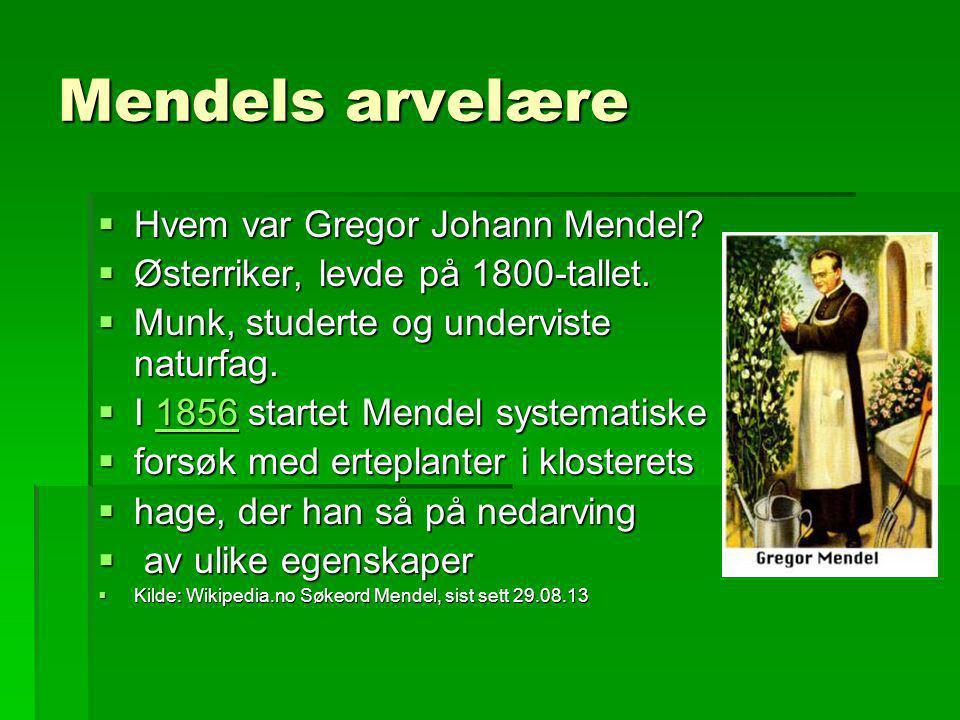 Mendels arvelære Hvem var Gregor Johann Mendel