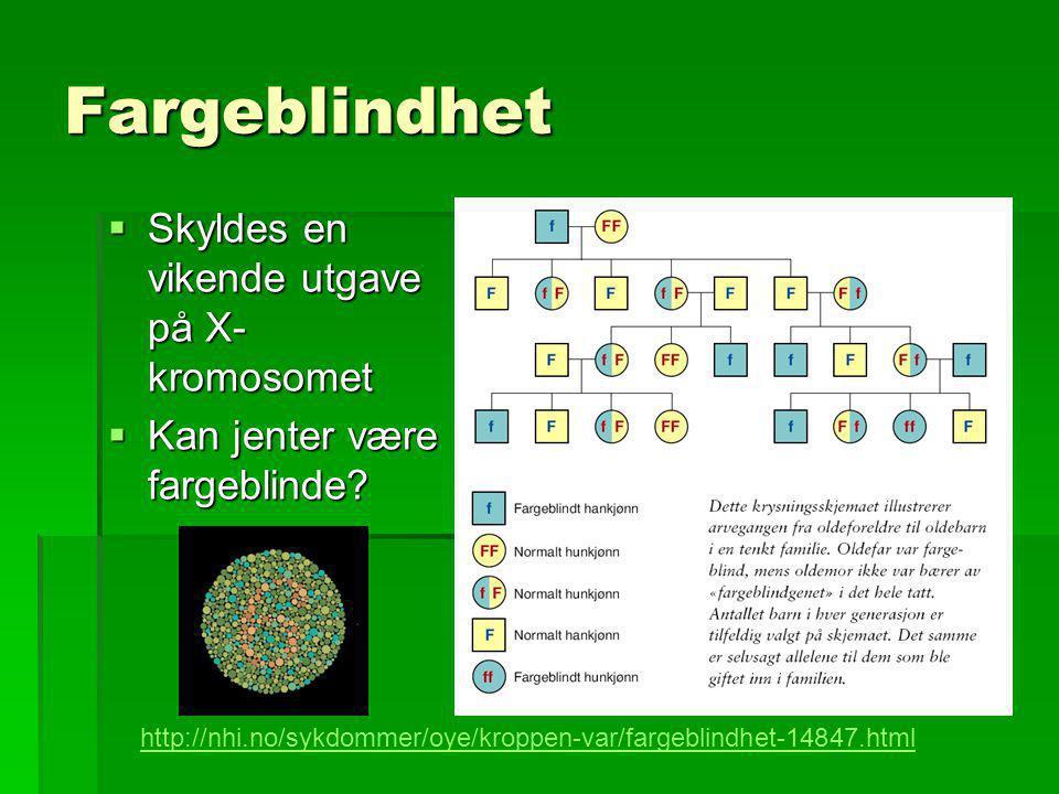 Fargeblindhet Skyldes en vikende utgave på X-kromosomet
