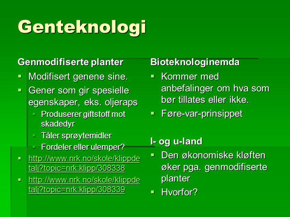 Genteknologi Genmodifiserte planter Bioteknologinemda