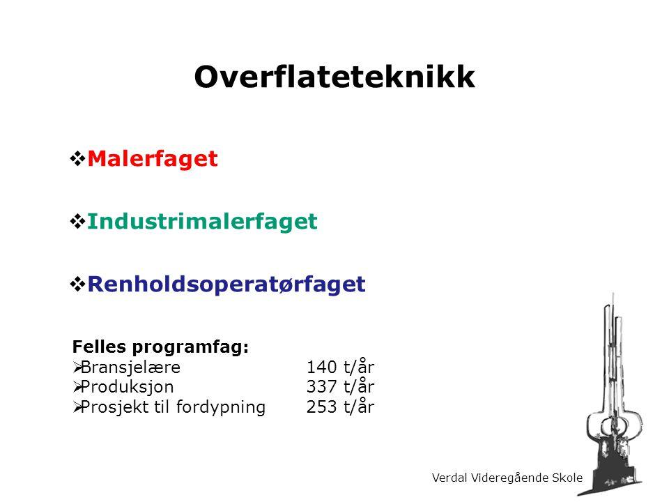 Overflateteknikk Malerfaget Industrimalerfaget Renholdsoperatørfaget
