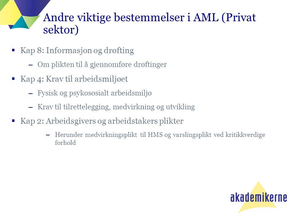 Andre viktige bestemmelser i AML (Privat sektor)