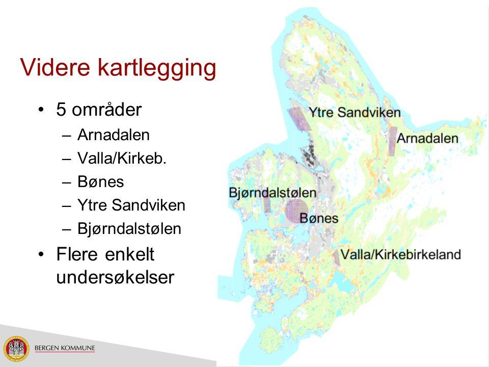 Videre kartlegging 5 områder Flere enkelt undersøkelser Arnadalen