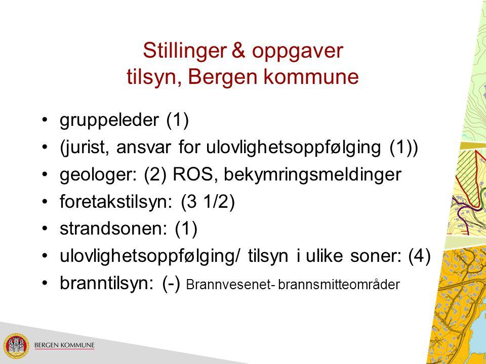 Stillinger & oppgaver tilsyn, Bergen kommune