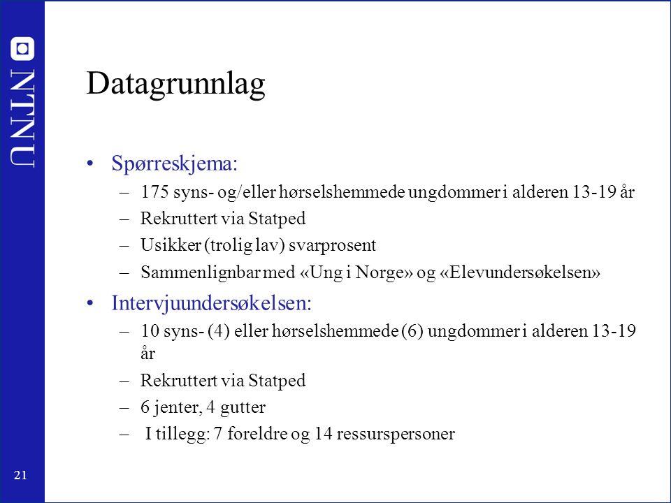 Datagrunnlag Spørreskjema: Intervjuundersøkelsen: