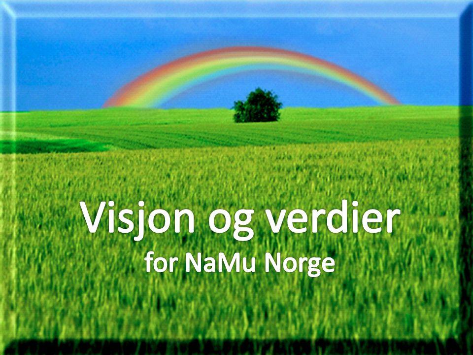 Visjon og verdier for NaMu Norge
