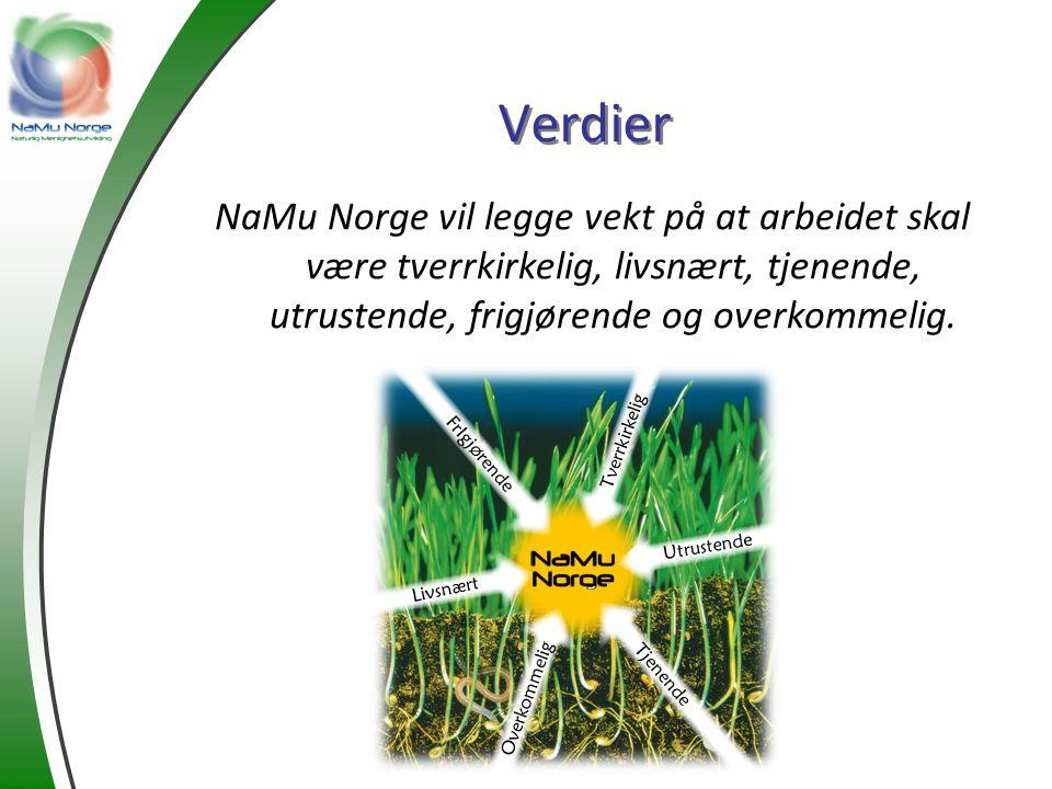 Verdier NaMu Norge vil legge vekt på at arbeidet skal være tverrkirkelig, livsnært, tjenende, utrustende, frigjørende og overkommelig.