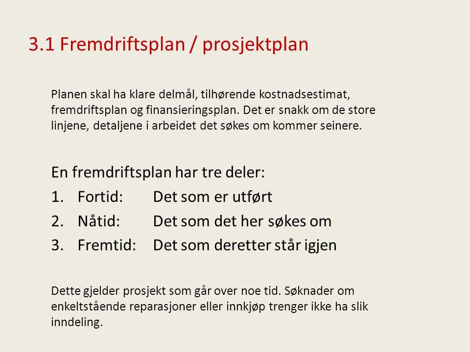 3.1 Fremdriftsplan / prosjektplan