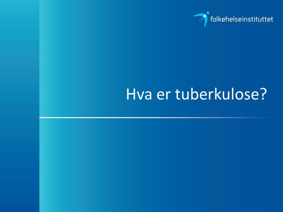 Hva er tuberkulose