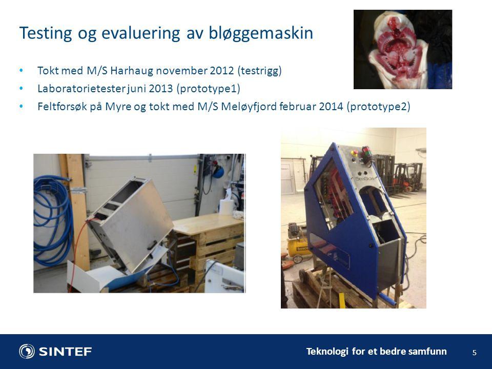 Testing og evaluering av bløggemaskin
