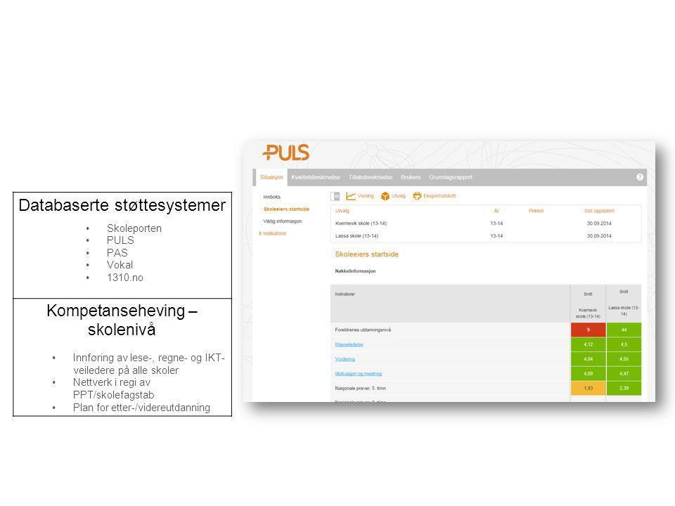 Databaserte støttesystemer