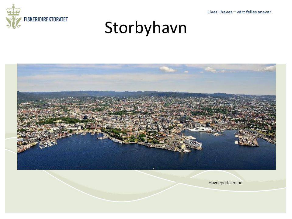Storbyhavn Havneportalen.no