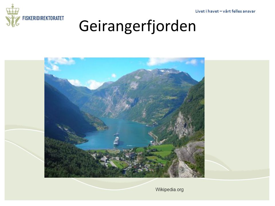 Geirangerfjorden Wikipedia.org