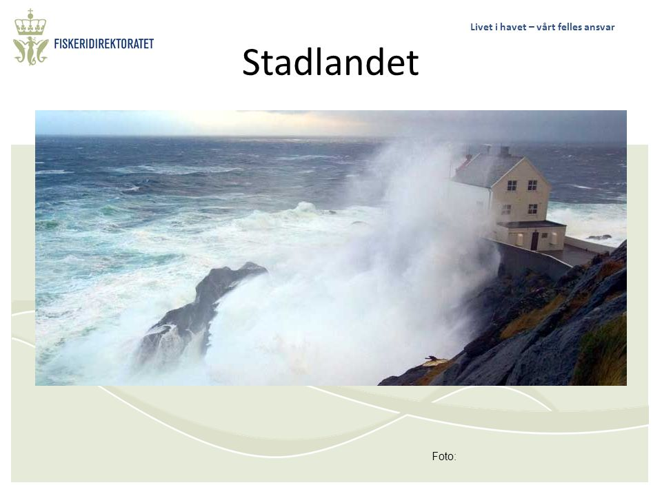 Stadlandet Foto: