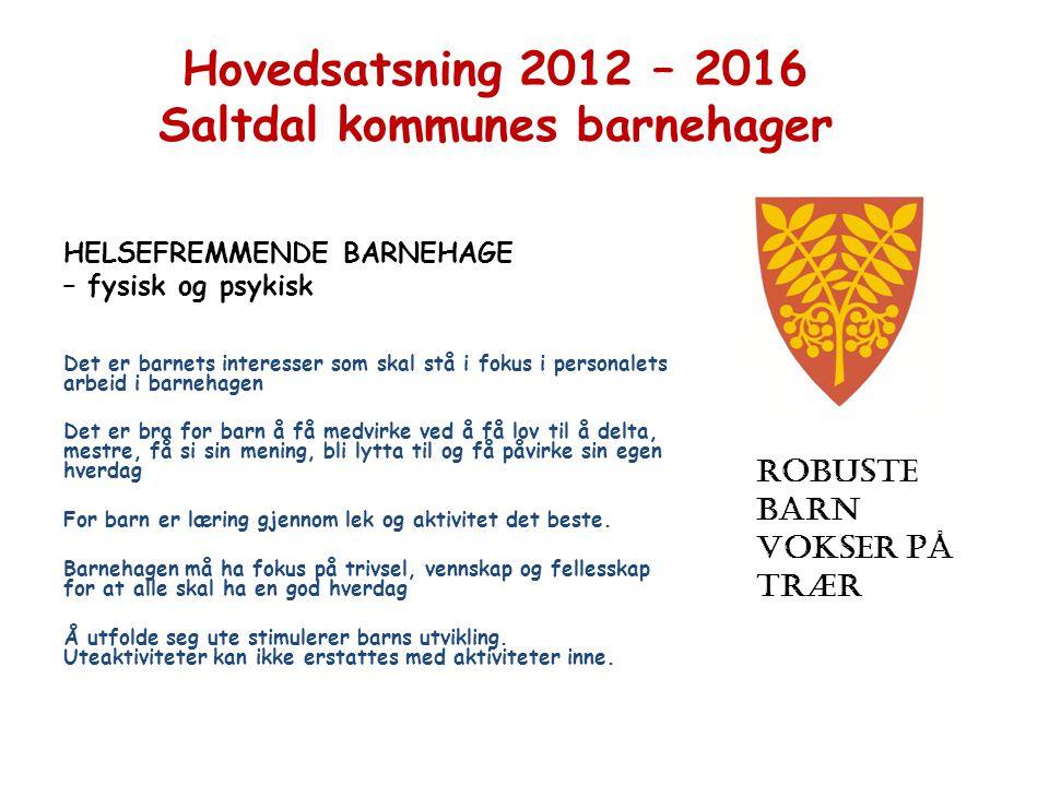 Hovedsatsning 2012 – 2016 Saltdal kommunes barnehager
