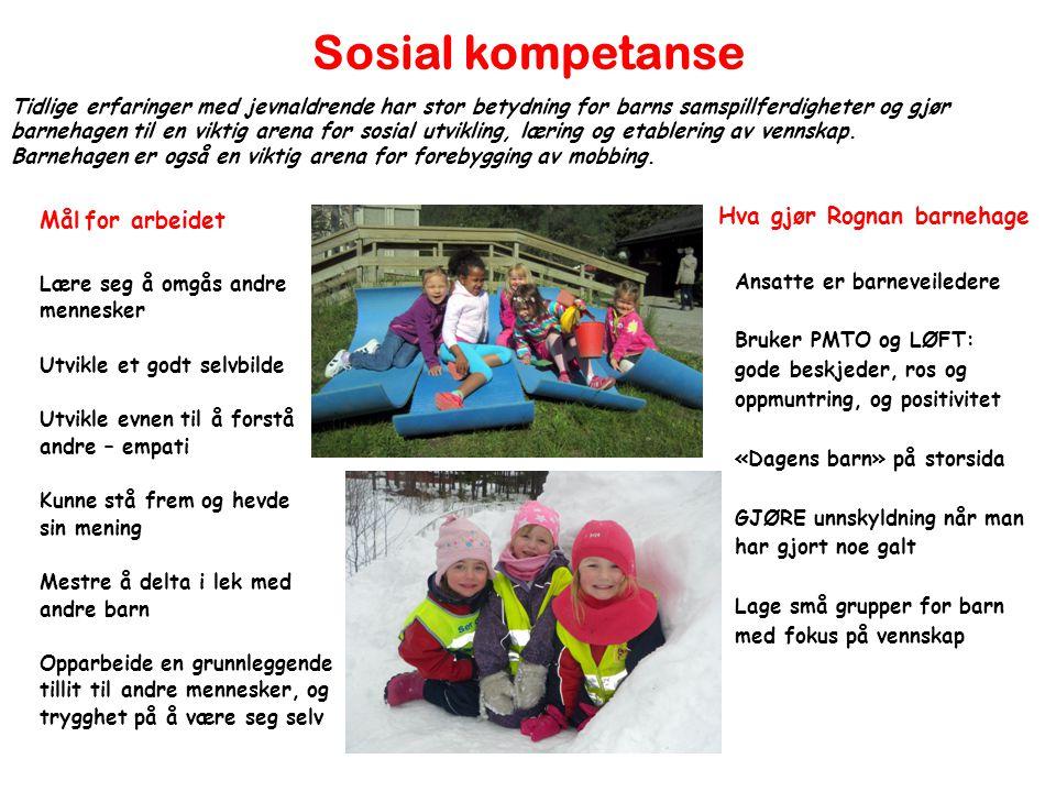 Sosial kompetanse Mål for arbeidet Hva gjør Rognan barnehage