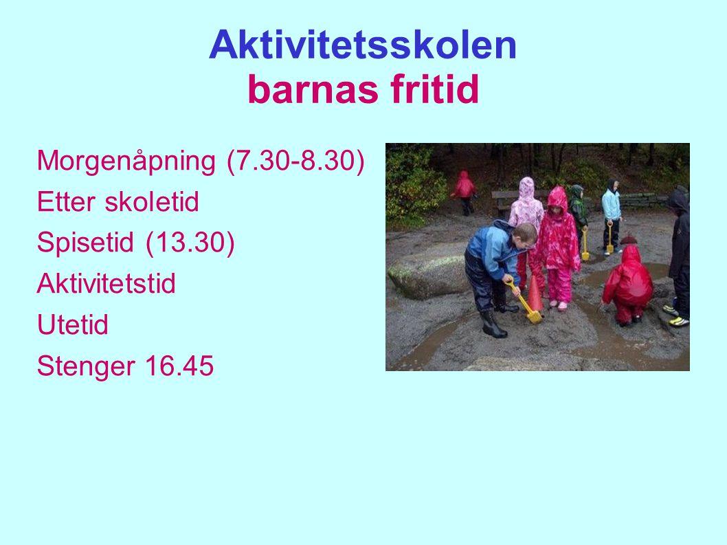 Aktivitetsskolen barnas fritid