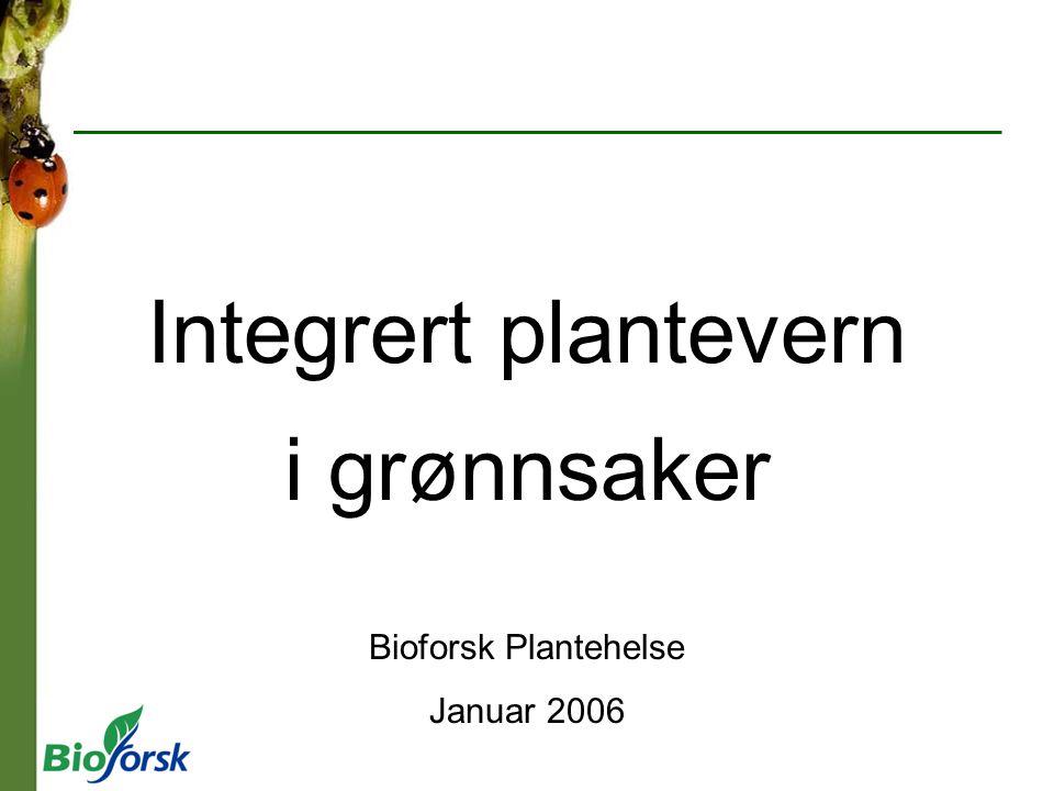 i grønnsaker Bioforsk Plantehelse Januar 2006