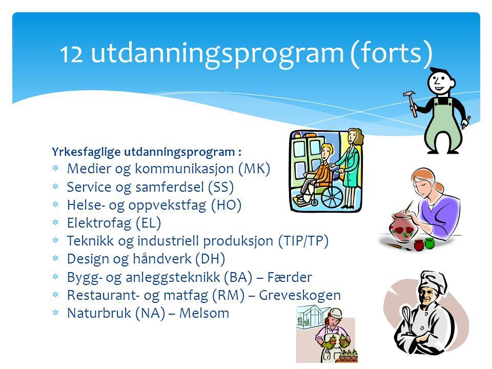 12 utdanningsprogram (forts)