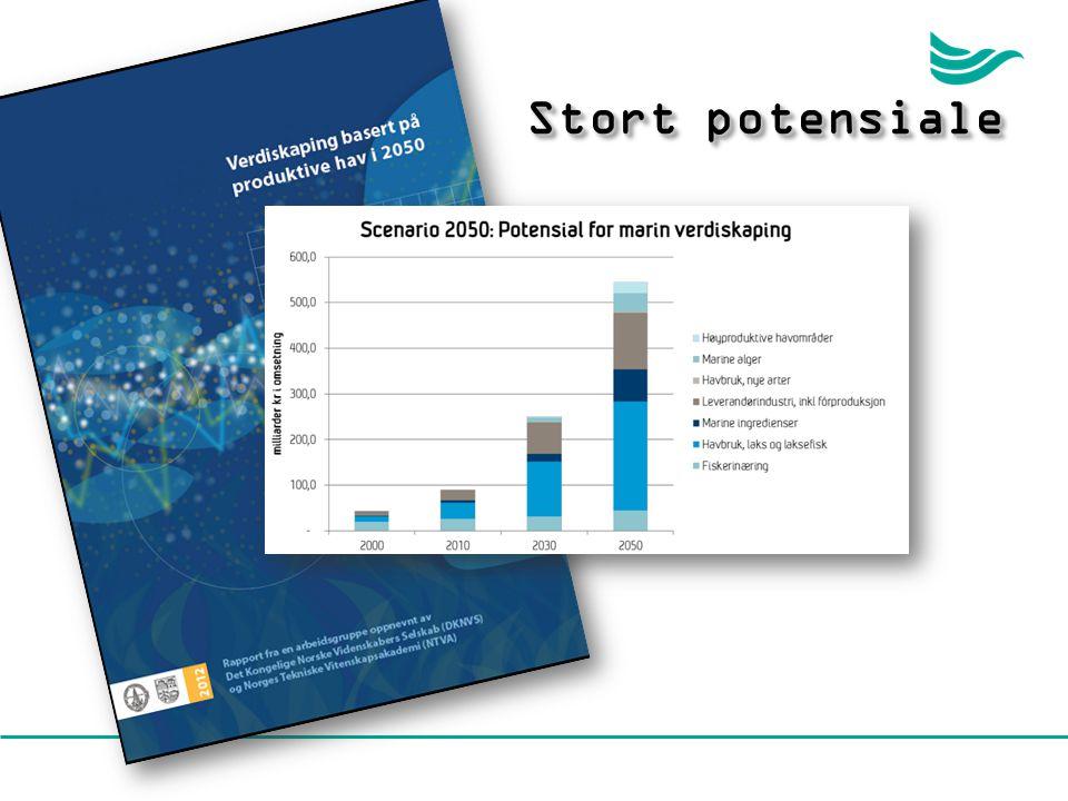 Stort potensiale En vitenskapsrapport – Akademirapporten - er nettopp publisert. Denne estimerer mulighet for en verdiskapning i Norge på > 500 mrd.