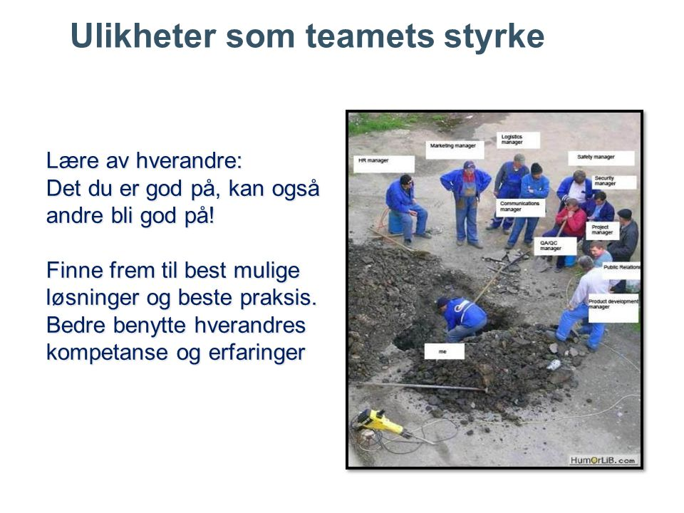 Ulikheter som teamets styrke