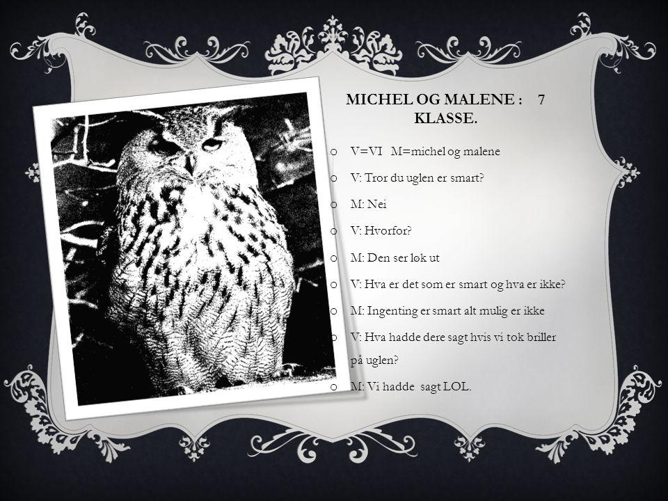 Michel og malene : 7 Klasse.
