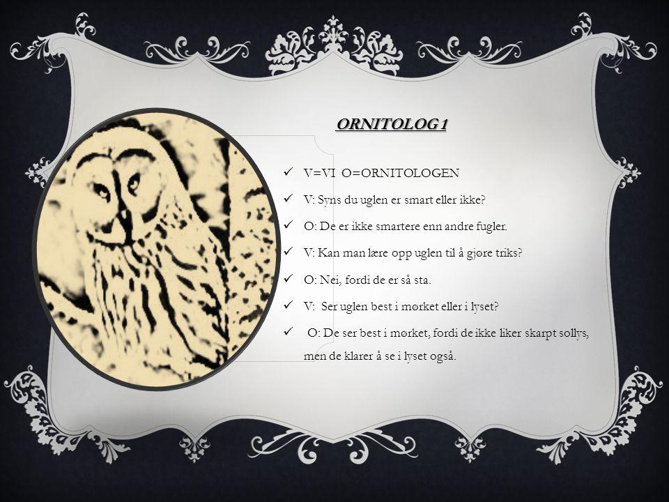 Ornitolog 1 V=VI O=ORNITOLOGEN V: Syns du uglen er smart eller ikke