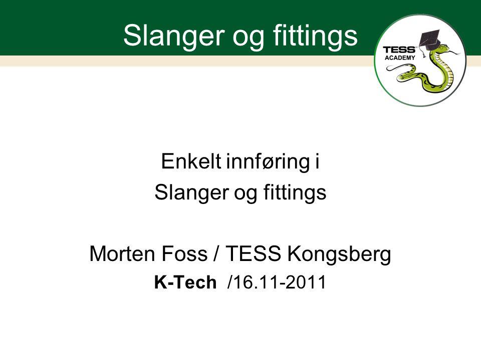 Morten Foss / TESS Kongsberg